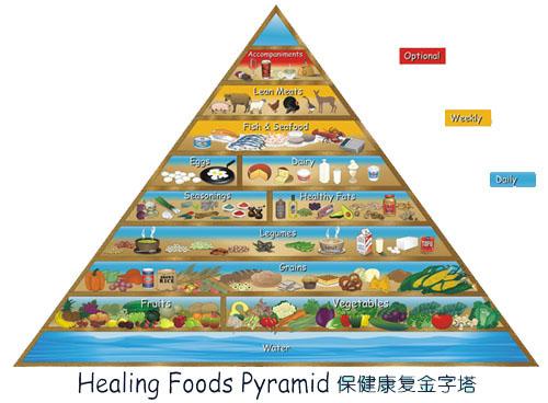 食物金字塔由美国